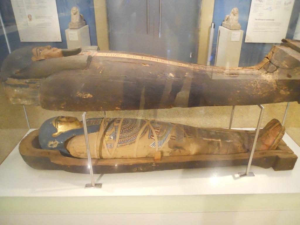 2560px-Egyptian_Mummy_(5986570951)