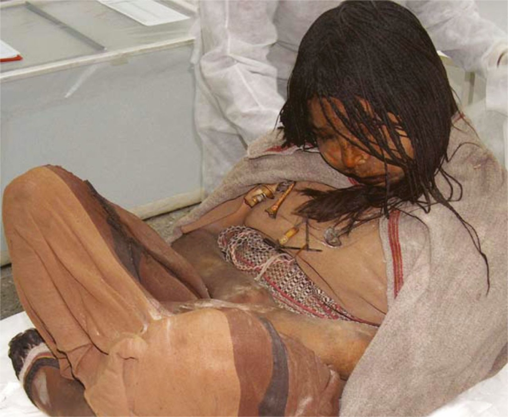 Llullaillaco_mummies_in_Salta_city,_Argentina